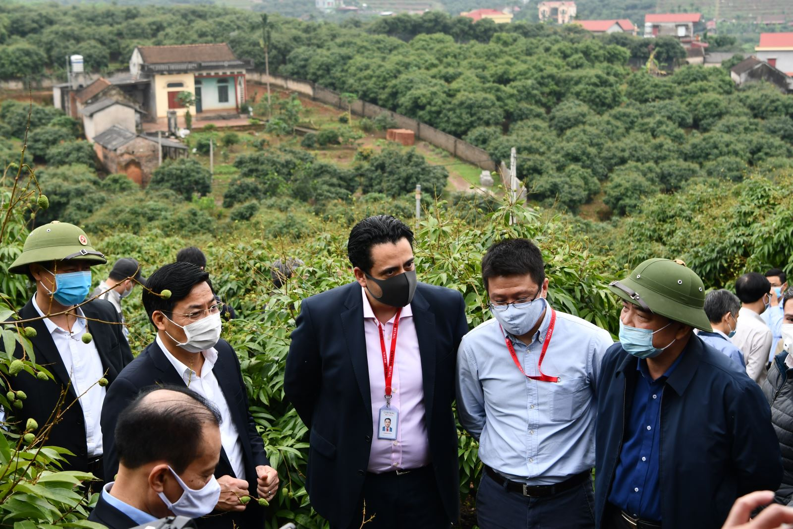 Bộ trưởng Nguyễn Xuân Cường kiểm tra tình hình sản xuất vải và chăn nuôi lợn tại Bắc Giang