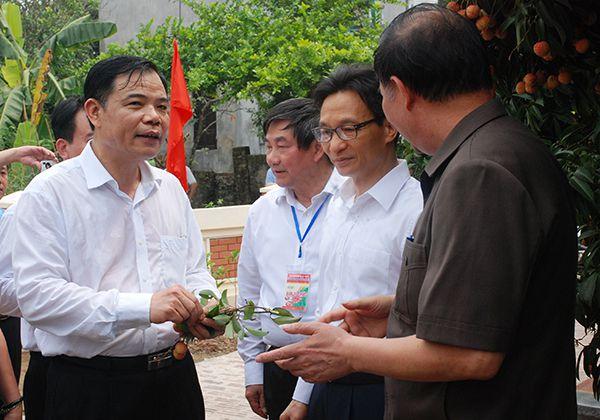 Phó Thủ tướng Vũ Đức Đam và Bộ trưởng Nguyễn Xuân Cường xuống tận vườn để tìm hiểu về vụ vải thiều năm nay của nông dân.