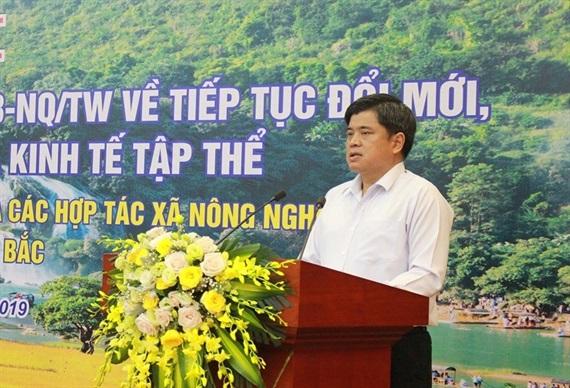 Nhiều giải pháp nâng cao hiệu quả hoạt động HTX miền núi phía bắc