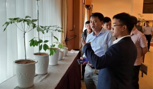 Hội thảo quốc tế phát triển sâm Việt Nam công nghệ cao