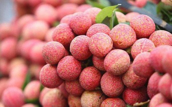 Bac Giang will boost domestic lychee consumption due to difficulties in export