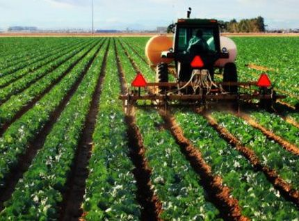 MARD Wants Hi Tech Agriculture Zones